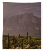 Spring Rain In The Sonoran  Fleece Blanket