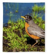 Spring Robin Fleece Blanket