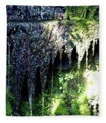 Spring Sprung  Fleece Blanket