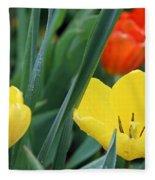 Spring Tulips 144 Fleece Blanket