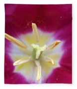 Spring Tulips 187 Fleece Blanket