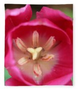 Spring Tulips 200 Fleece Blanket