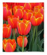 Spring Tulips 207 Fleece Blanket