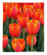 Spring Tulips 210 Fleece Blanket