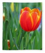 Spring Tulips 214 Fleece Blanket