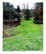 Spring Valley  Fleece Blanket