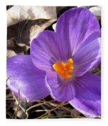 Spring Violet Fleece Blanket