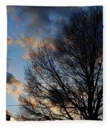 Springfield Evening 2013-02-14 Fleece Blanket