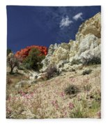Springtime At Red Rock Canyon Fleece Blanket