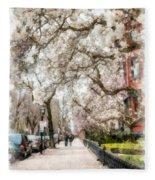 Springtime Boston Back Bay Fleece Blanket