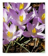 Springtime Crocuses  Fleece Blanket