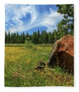 Springtime In Lassen County Fleece Blanket