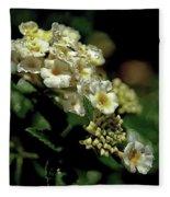 Sprinkles On Lantana Flower Fleece Blanket