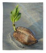 Sprouting Coconut Fleece Blanket