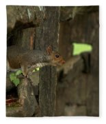 Squatting Squirrel Fleece Blanket