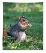 Squirrel Eating A Nut - Eugene Oregon Fleece Blanket