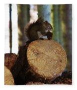 Squirrel Eating Pinecones Fleece Blanket