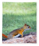 Squirrel In The Park Fleece Blanket