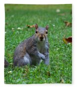 Squirrel Iv Fleece Blanket