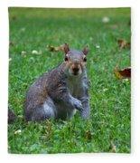 Squirrel Iv Fleece Blanket