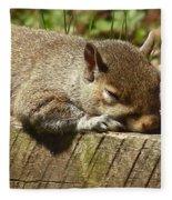 Squirrel Nap Fleece Blanket