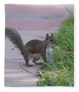 Squirrel Nuts Fleece Blanket
