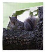 Squirrel On A Limb Fleece Blanket