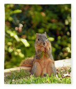 Squirrel On A Log Fleece Blanket