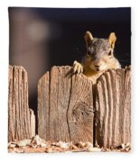Squirrel On The Fence Fleece Blanket