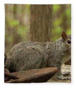 Squirrel With Anchor Fleece Blanket