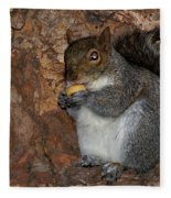 Squirrell Fleece Blanket
