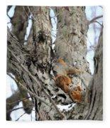 Squirrels At Play Vertically Fleece Blanket
