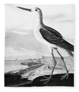 St. Augustine, Florida Fleece Blanket