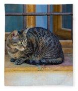 St Paul Cat Fleece Blanket