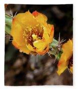 Staghorn Cactus Blossons Fleece Blanket