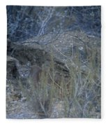 Stalked - Mountain Lion Fleece Blanket