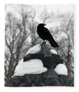 Crow Stance On Cold Stone Fleece Blanket