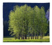 Stand Of Trees Yosemite Valley Fleece Blanket
