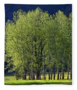 Stand Of Trees Yosemite Valley Fleece Blanket