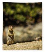 Stand Up Fleece Blanket