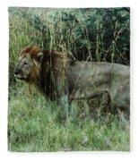 Standing Lion Fleece Blanket