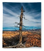 Standing Regardless Fleece Blanket