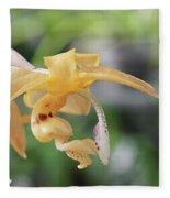 Stanhopea Orchid Fleece Blanket