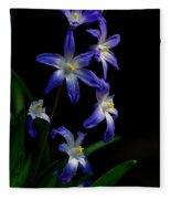 Star Flower Fleece Blanket