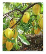 Star Fruit Belongs To The Plant Family Fleece Blanket