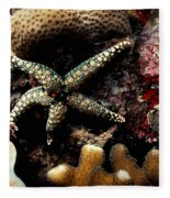 Starfish Fleece Blanket
