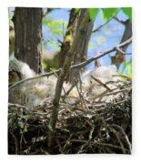 Staring From Its Nest Fleece Blanket