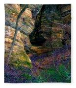 Starved Rock No 2 Fleece Blanket