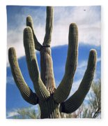 Stately Saguaro Fleece Blanket