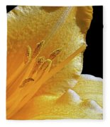Stella D'oro - Day Lily Fleece Blanket